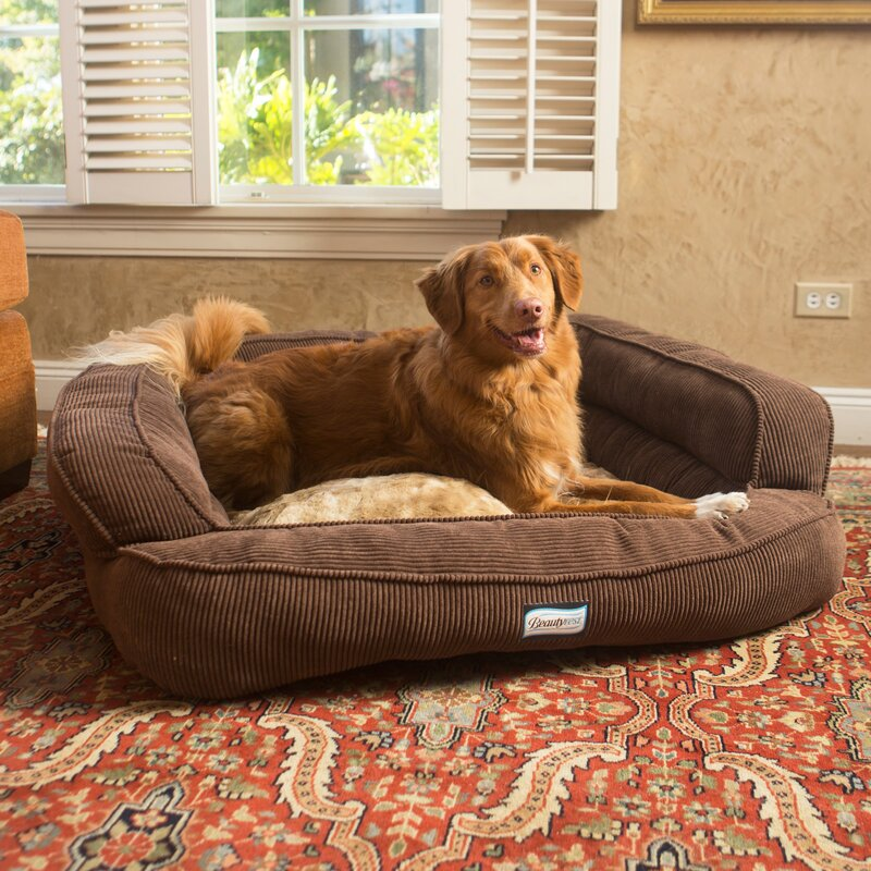 Beautyrest Colossal Rest Orthopedic Memory Foam Extra Large Dog Bed