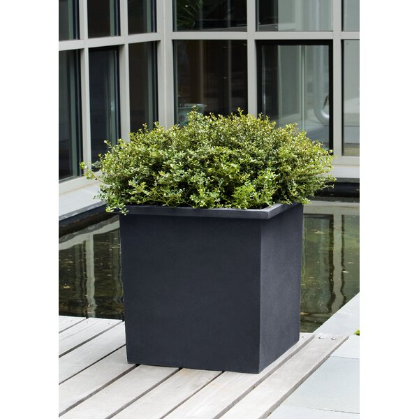 Justyn Bardo Fiberglass Planter Box by 17 Stories