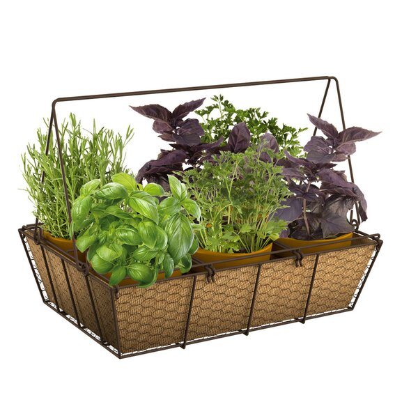 Mason Jar Metal Planter Box by Panacea Products