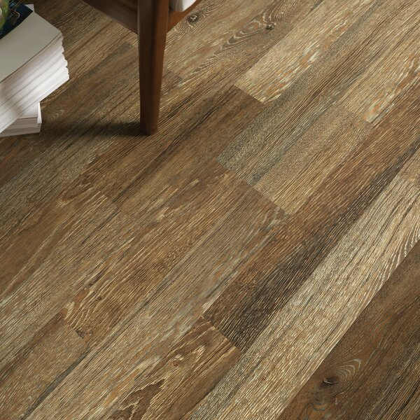 Simple Elegance 8 x 51 x 6mm Laminate Flooring in Pioneer Oak by Shaw Floors