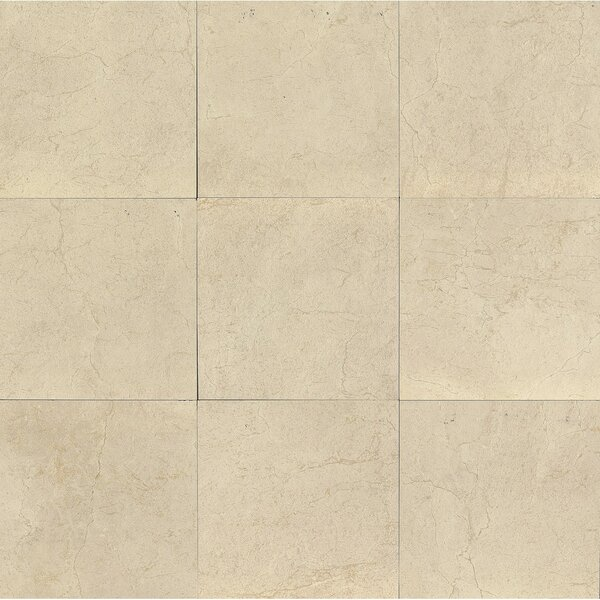 El Dorado 24 x 24 Porcelain Field Tile in Oyster Polished by Grayson Martin