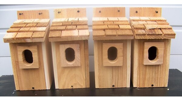 12 in x 6 in x 9 in Bluebird House (Set of 4) by Cedarnest