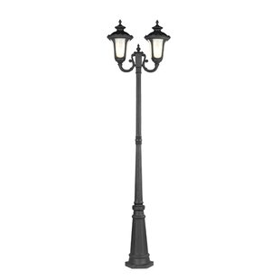 Read Reviews Gunnell Outdoor 2-Light Post Light By Three Posts