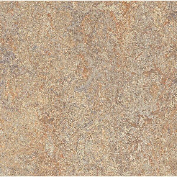 Marmoleum Click Cinch Loc 11.81 x 11.81 x 9.9mm Cork Laminate Flooring in Tan by Forbo