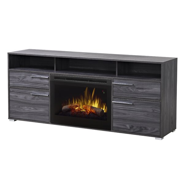 Sander 66.5 TV Stand with Fireplace by Dimplex