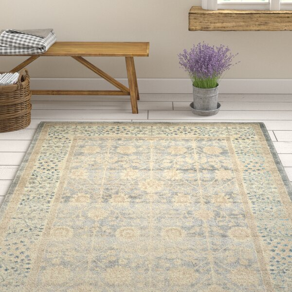 Gray Area Rug by Birch Lane™