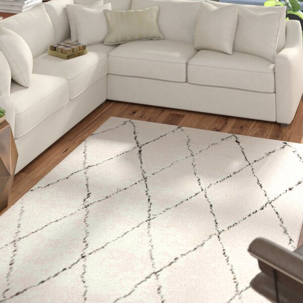 Dunford Hand-woven Ivory Area Rug by Mercury Row