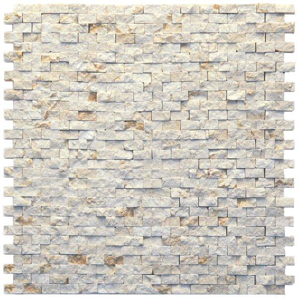 Modern 0.5 x 0.75 Marble Splitface in Still Life by Solistone