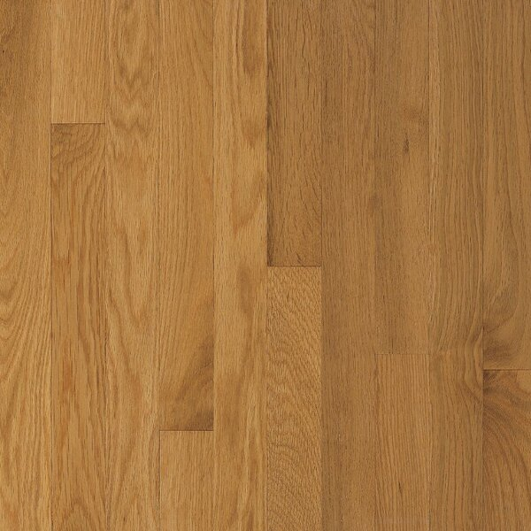 Waltham 2-1/4 Solid Oak Hardwood Flooring in Cornsilk by Bruce Flooring