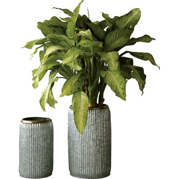 Doucet 2-Piece Metal Pot Planter Set by Williston Forge