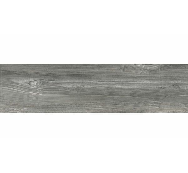 Deck 12 x 48 Porcelain Wood Look/Field Tile in Gray by Tesoro