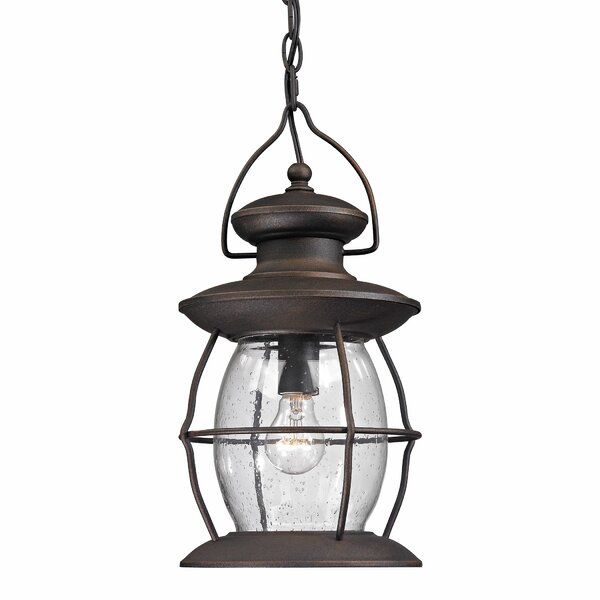 Surana 1-Light Outdoor Hanging Lantern by Longshore Tides