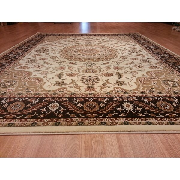 Brown/Beige Area Rug by Rug Tycoon