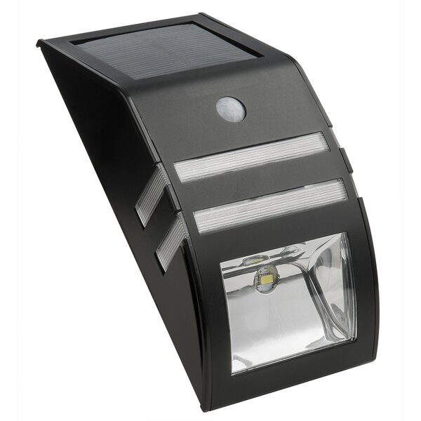 1-Light Deck Light by Paradise Garden Lighting