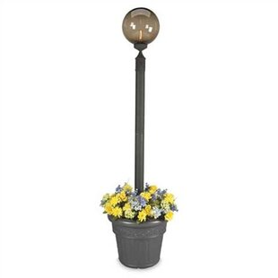 Great Price Europeant Outdoor 1-Light 85 Post Light By Patio Living Concepts