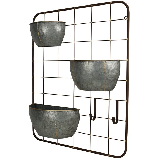 Primus 3 Pot with 2 Hook Metal Wall Planter by Gracie Oaks