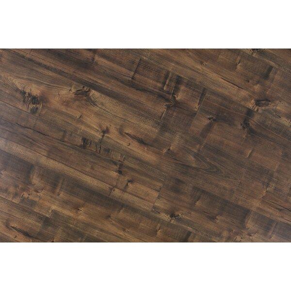 Dombrowski 8 x 48 x 12mm Maple Laminate Flooring in Madura by Serradon