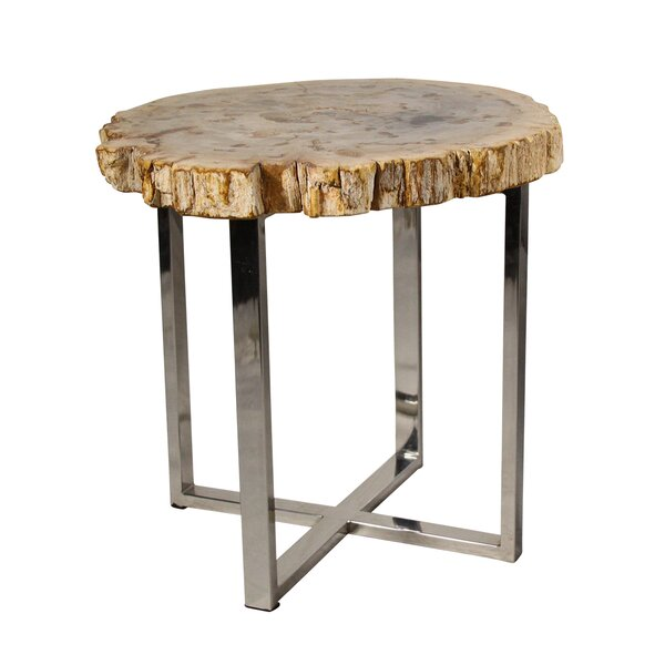 Petrified Wood End Table by Ibolili