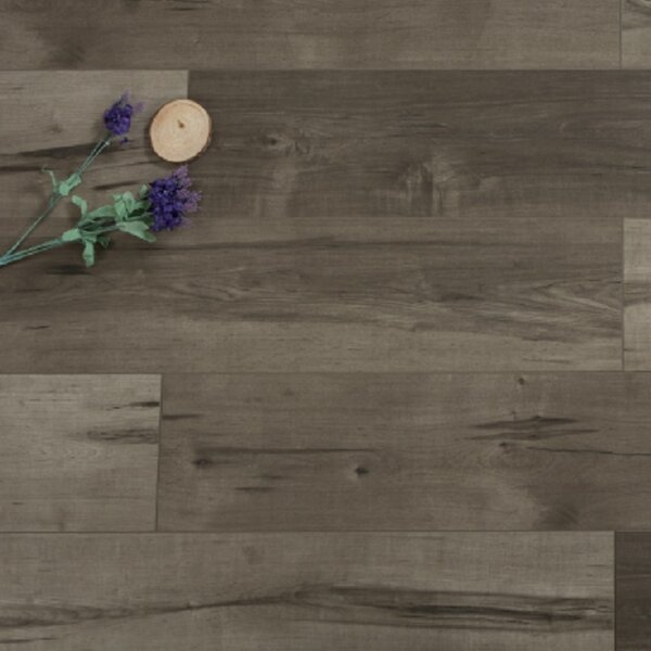 Cirrus Gale 12 x 48 x 12mm Maple Laminate Flooring in Embossed by Islander Flooring