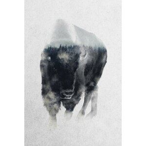 Bison in Mist Photographic Print on Wrapped Canvas by Mercury Row