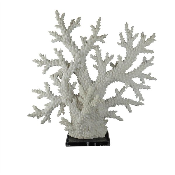 Briele Stylish Polyresin Coral Sculpture on Acrylic Base by Highland Dunes