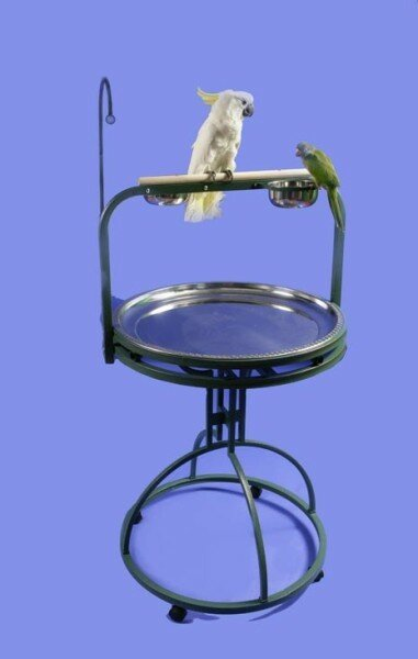 Conlan Deluxe Bird Play Stand with Wood Perch by Archie & Oscar