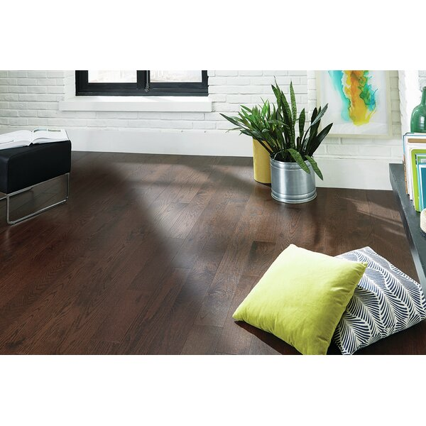 Reykjavik 5 Engineered Oak Hardwood Flooring in Brown by Branton Flooring Collection
