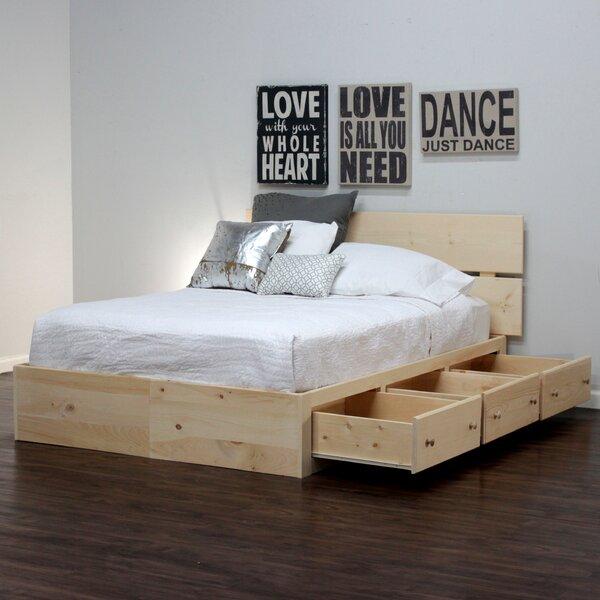 Schwabe Storage Platform Bed by Winston Porter