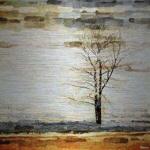 'Lone Tree' by Parvez Taj Painting Print on Brushed Aluminum by Parvez Taj