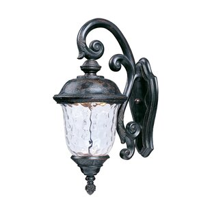 Affordable Islington 1-Light Outdoor Wall Lantern By Astoria Grand