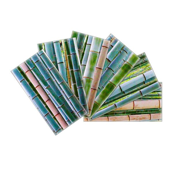 Crystal Skin 3 x 6 Glass Subway Tile in Green/Blue by SkinnyTile