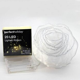 Affordable Price 20 LED Ribbon Fairy String Light By Zingz & Thingz