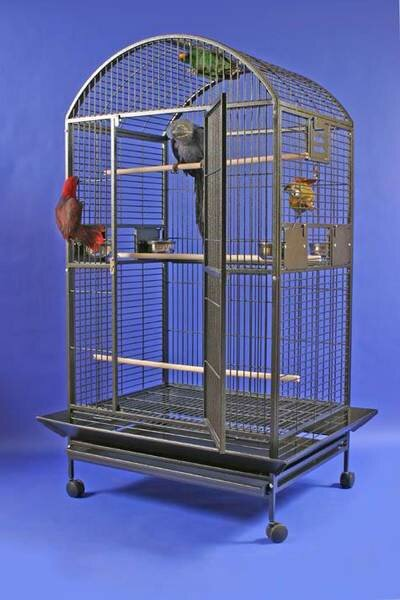 Enormous Dome Top Bird Cage by A&E Cage Co.