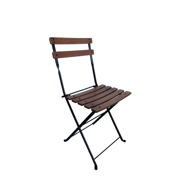 Holliston Folding Patio Dining Chair (Set of 2) by George Oliver