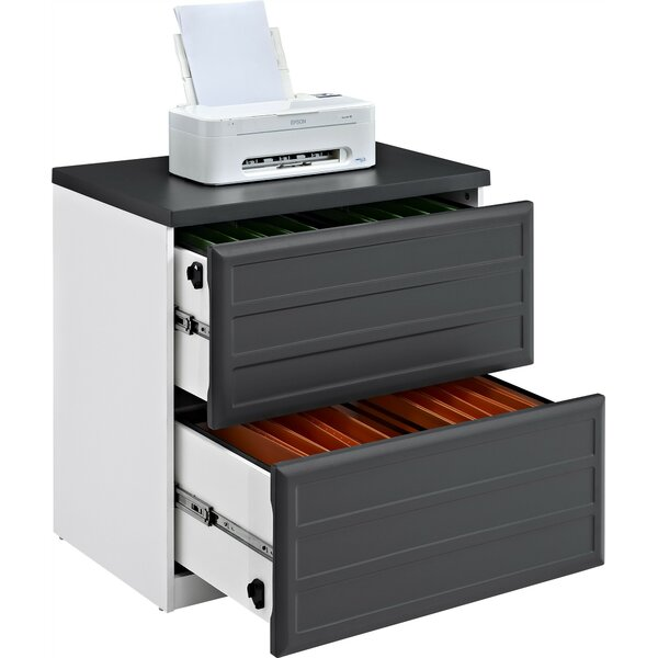 Elizabeth 2-Drawer Lateral File by Latitude Run