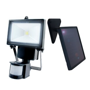 Affordable 1-Light LED Flood Light By Nature Power