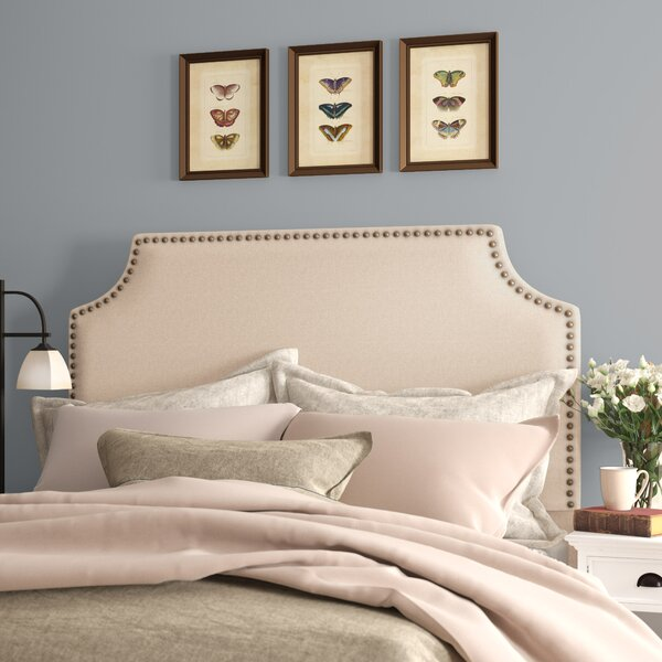 Parker Nailhead Trim Upholstered Panel Headboard by Birch Lane™ Heritage