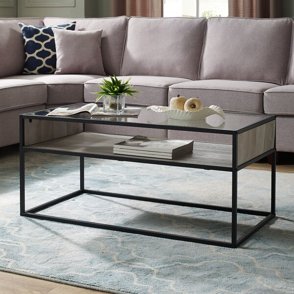 Nowak Frame Coffee Table With Storage By Williston Forge