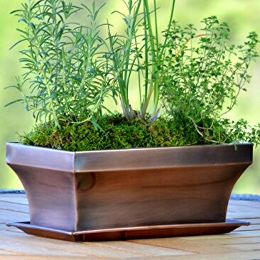 Staineless Planter Box by H. Potter