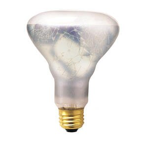 65W 130-Volt Incandescent Light  Bulb (Set of 5) by Bulbrite Industries