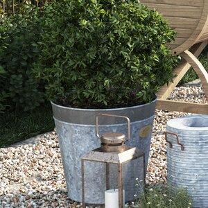 Vintage Plant Pot (Set of 2)