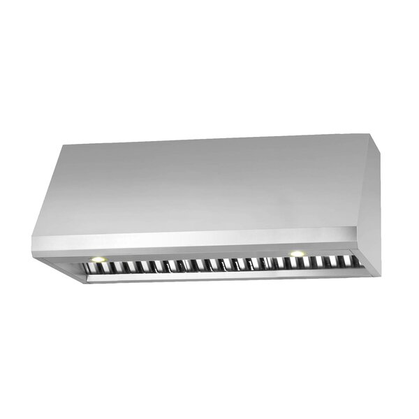 36 Pro Series 850 CFM Ducted Under Cabinet Range Hood by Ancona