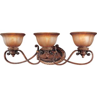 Find the perfect Dee 3-Light Vanity Light By Fleur De Lis Living