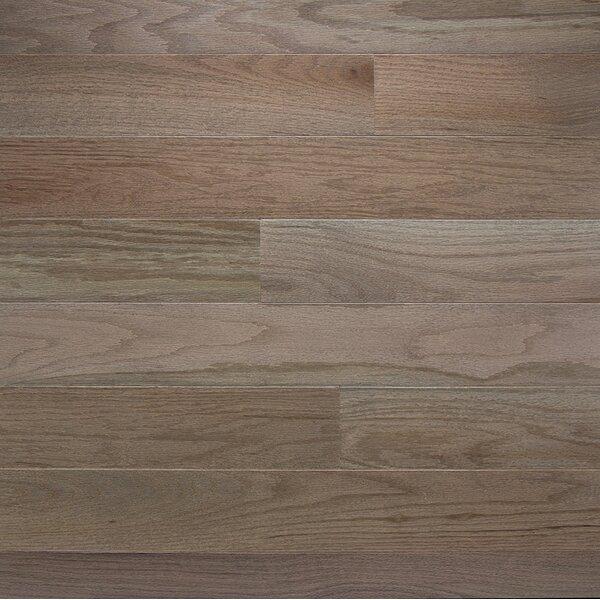 Color Plank 5 Solid Oak Hardwood Flooring in Smoke by Somerset Floors
