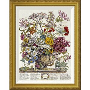 'October - Twelve Months of Flowers' by Robert Furber Framed Wall Art by Global Gallery