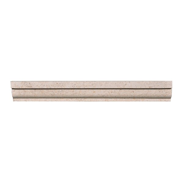 Limestone Chair Rail (Set of 5) by The Bella Collection