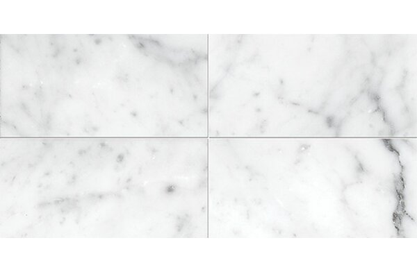 Carrara 3 x 6 Marble Subway Tile in Polished White by Parvatile