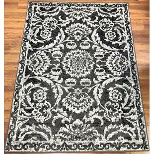 Top Reviews Dunlin Floral Gray/Black Area Rug ByAstoria Grand