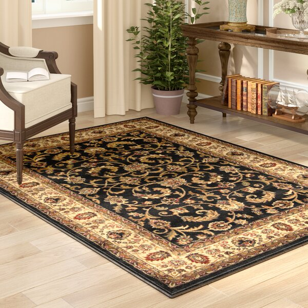 Caterina Black/Ivory/Burgundy Area Rug by Astoria Grand