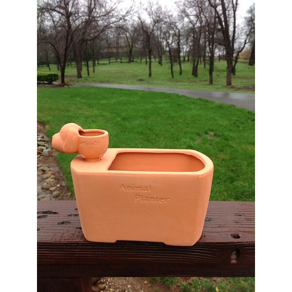 Domingues Dog Terracotta Pot Planter by Winston Porter